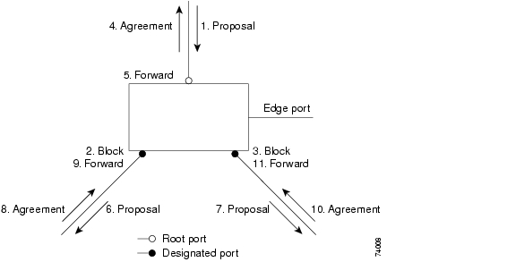 Chapter 7 Configuring Stp And Rstp